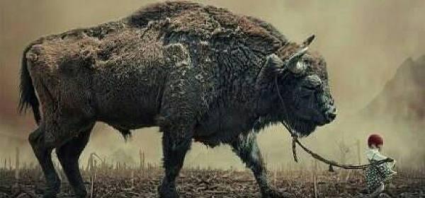 【老刘侃币圈】听声音,感受大牛的逼近。