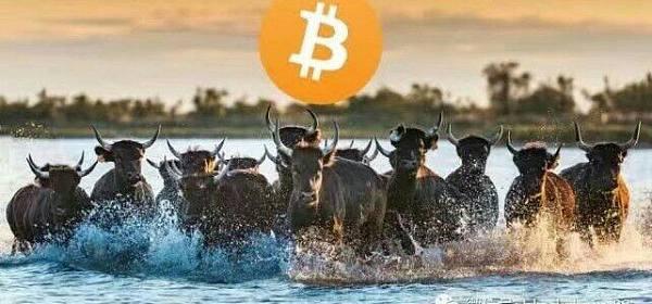 【闲谈】无论是理论还是数据,都表明2019年将出现数字货币的牛市