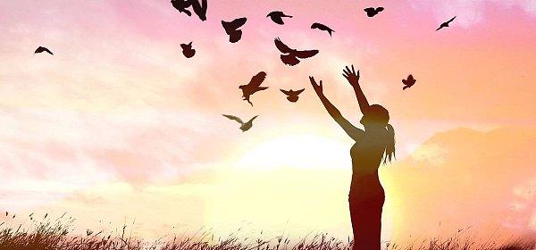 财富增值是为了心灵与身体的自由