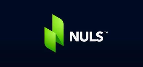 【NULS】可定制的区块链基础设施