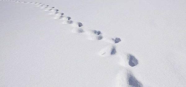 熊市到底有多冷?