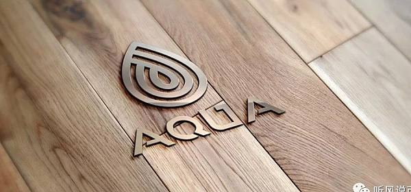 AQUA是区块链的得到吗?