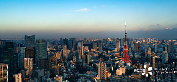 你所不知道的日本:区块链世界里的激进前行者