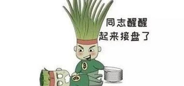 在币圈混的小韭菜究竟是什么样的